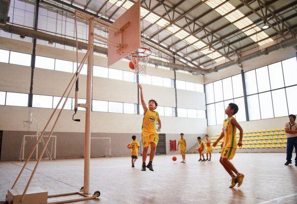Sân chơi thể thao trong nhà như một khu thể thao chuyên nghiệp